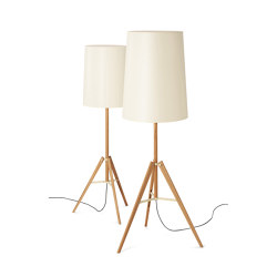 Tripod | Floor lamp | Free-standing lights | Carpyen