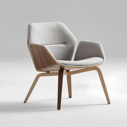 Ginkgo Ply Lounge | Armchairs | Davis Furniture