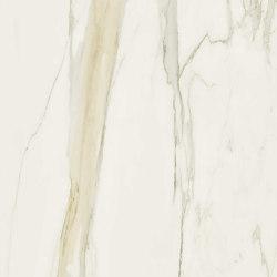 I Classici di Rex   calacatta gold soft   Ceramic tiles   FLORIM