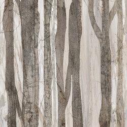 Forest | Wall art / Murals | TECNOGRAFICA