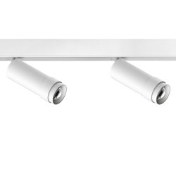 VERTICO mounted profile spotlights, 2-flame white | Ceiling lights | RIBAG