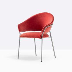 Jazz armchair 3716 | Chairs | PEDRALI