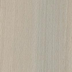 Lindstrom Beech Light | Wood panels | Pfleiderer
