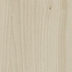 Kiruna Maple | Wood panels | Pfleiderer