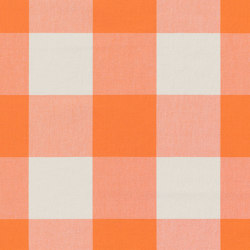 Alpha-Check 2.0 - 347 orange | Drapery fabrics | nya nordiska