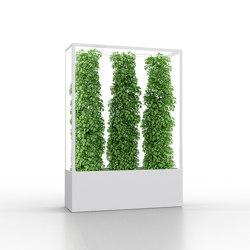 Cube Wall 1600 | Sichtschutz | lasfera