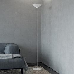 Dry | F1 | Free-standing lights | Rotaliana srl