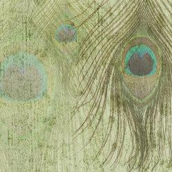 Peacock feathers | Revestimientos de paredes / papeles pintados | WallPepper