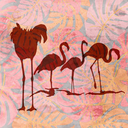 Wild flamingos | Wall coverings / wallpapers | WallPepper