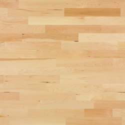 Unopark Maple canadian 15 | Wood flooring | Bauwerk Parkett