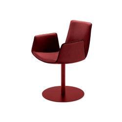 Amelie | Armchair High mit Tellerfuß | Stühle | FREIFRAU MANUFAKTUR