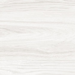 Woods Arctic | Ceramic tiles | Ceramica Mayor