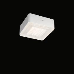Modul Q 36 Frame | Ceiling lights | Nimbus
