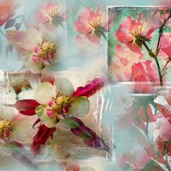 Lanterne fiorite | Wandbeläge / Tapeten | WallPepper