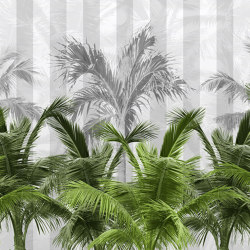 Palms spring | Wall coverings / wallpapers | WallPepper