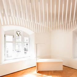 SPÄH designed acoustic
