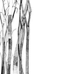 Sheer | A medida | GLAMORA