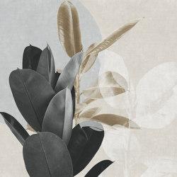 Victoria   Revestimientos de paredes / papeles pintados   GLAMORA