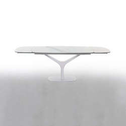 Ariston | Dining tables | Tonin Casa