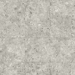 Ceppo Grey | Mosaici pareti | TERRATINTA GROUP