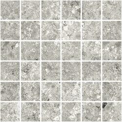 Ceppo Mosaic Grey | Mosaicos de pared | TERRATINTA GROUP