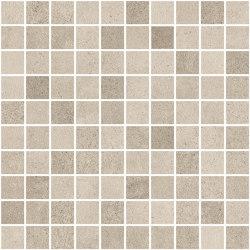 Ceppo Mosaic Sand | Mosaicos de pared | TERRATINTA GROUP