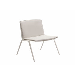Zebra Lounge Chair | Sessel | Fast