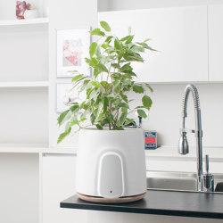 Natede White | Plant pots | Vitesy