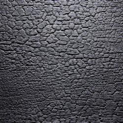 Burned Wood Alpi Black Ash optic lacquered | Placages bois | VD Werkstätten