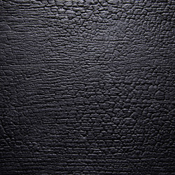 Burned Wood Alpi Black Ash optic lacquered | Chapas de madera | VD Werkstätten