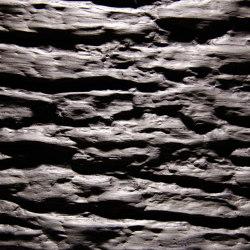 Rinde Oak grey | Wood veneers | VD Werkstätten