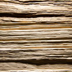 Spalt Alpi Heartwood Ash | Wood veneers | VD Werkstätten