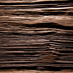 Spalt Hearwood walnut   Piallacci legno   VD Werkstätten
