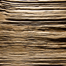 Spalt Knob Oak | Wood veneers | VD Werkstätten