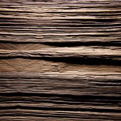 Spalt Walnut antique | Chapas de madera | VD Werkstätten