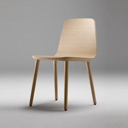 Bisell Chair | Sedie | TREKU