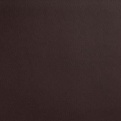 DOLCE POLYURETHANE C5 CHOCOLATE | Upholstery fabrics | SPRADLING