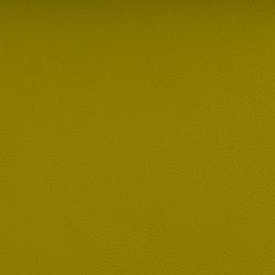 DOLCE POLYURETHANE C5 CITRON | Upholstery fabrics | SPRADLING