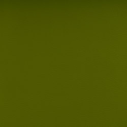 DOLCE POLYURETHANE C5 GRASS | Upholstery fabrics | SPRADLING