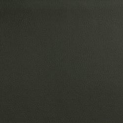 DOLCE POLYURETHANE C5 MOSS | Upholstery fabrics | SPRADLING