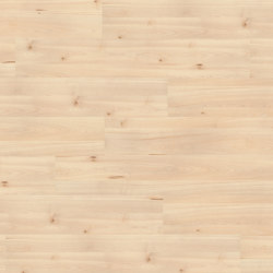 wineo PURline® Planks | Uptown Pine | Pavimenti gomma | Mats Inc.
