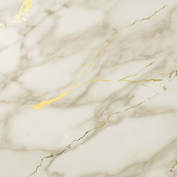 Marvel Royal Calacatta Gold Vein 1 | Ceramic tiles | Atlas Concorde