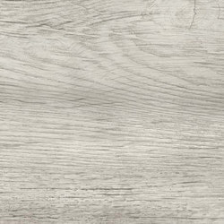 NASH White Wood | Baldosas de cerámica | Atlas Concorde