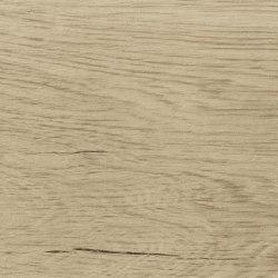 Nest Maple Matt | Planchas de cerámica | Fap Ceramiche