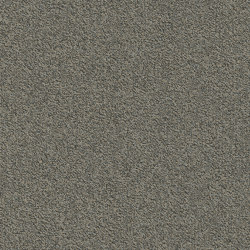 Millennium Nxtgen 817 | Carpet tiles | modulyss