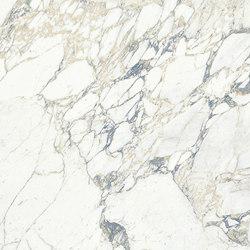 Arabescato Maxfine Marble |  | al2