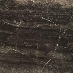 Argus Vein Marble |  | al2