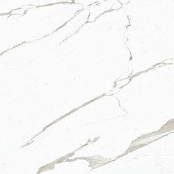 Extra White Maxfine Marble |  | al2