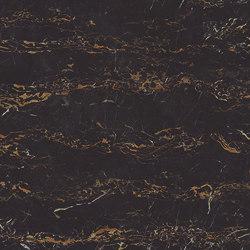 Portoro maxfine Marble |  | al2