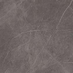 Stone Grey Maxfine Marble |  | al2